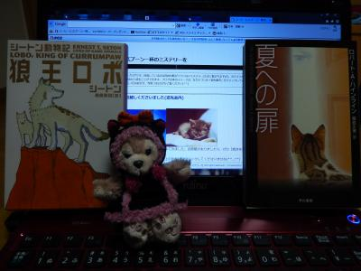 DSCN2651_convert_20131013063028.jpg