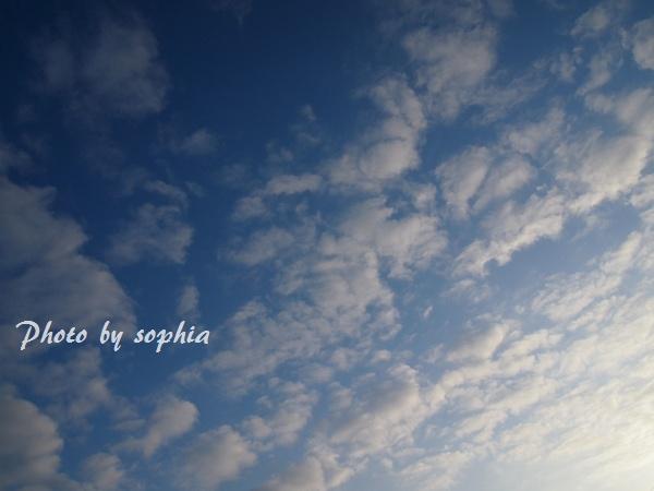 20130121orion-sora.jpg