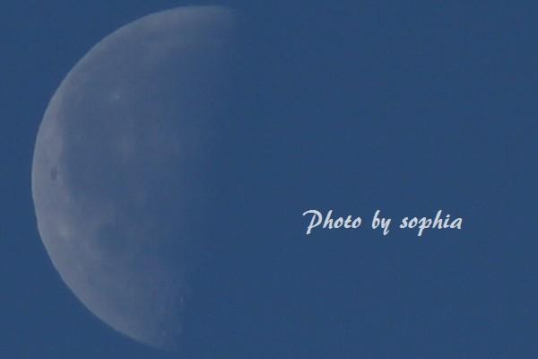 2014年1月24日 下弦の月Ⅱ