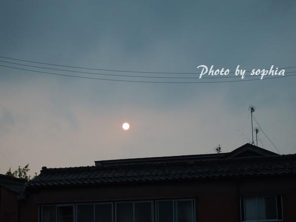 おぼろ太陽