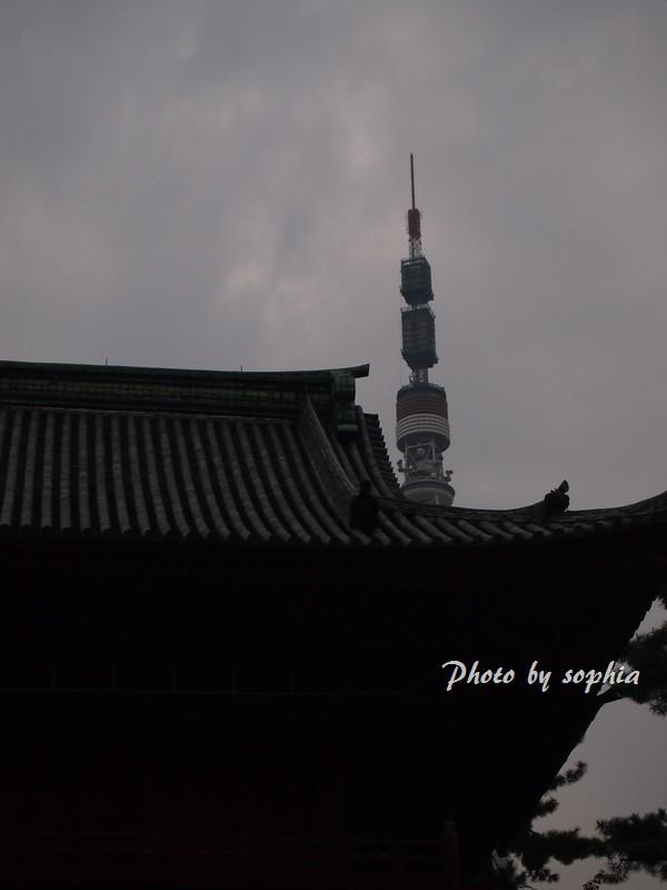 増上寺からの東京タワー