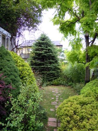 my-garden 133
