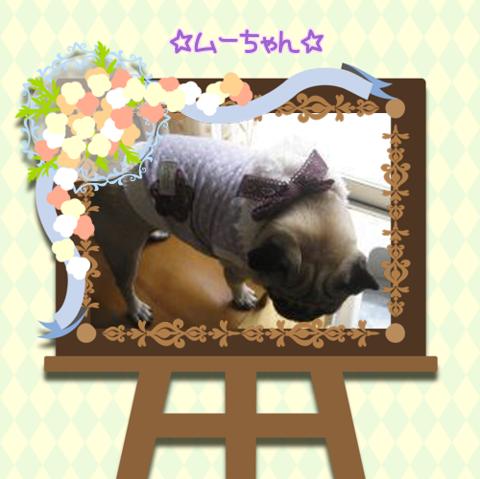 ig5Lemu-chan2.png