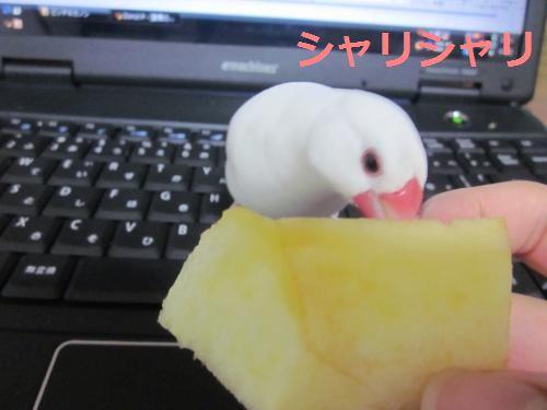 ピッチとりんご