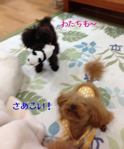 20131221101846fab.jpg
