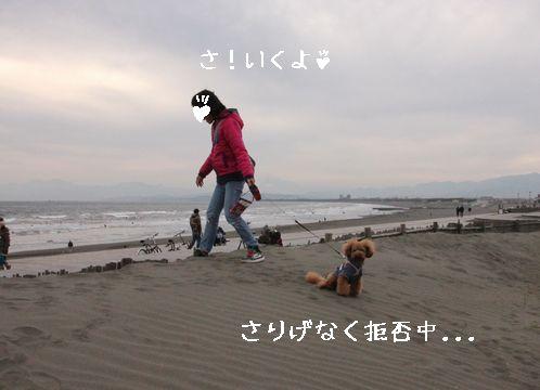 20140131070934da5.jpg