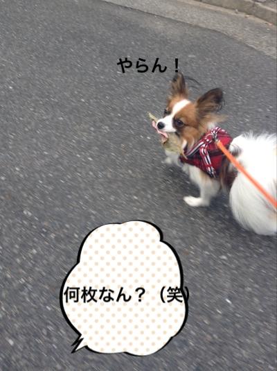 fc2blog_20141026211636fc1.jpg