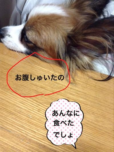 fc2blog_2014102720045821c.jpg