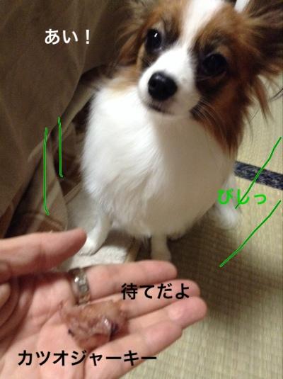 fc2blog_20141028221403c66.jpg