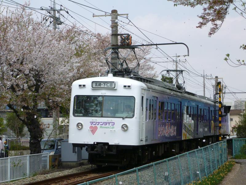 4/16 鉄道撮影記 桜吹雪と上信電鉄