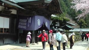 hashikura5.jpg
