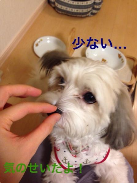 fc2blog_2014120312561649e.jpg
