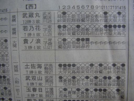 相撲11-3