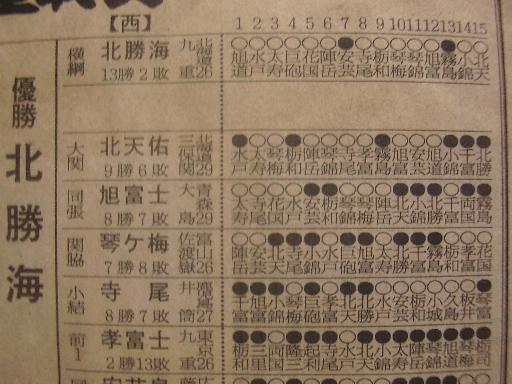 相撲13-3