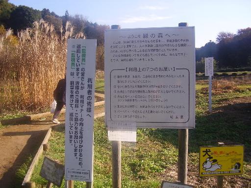 登山・街歩き17-4