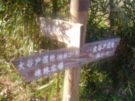 登山・街歩き17-2