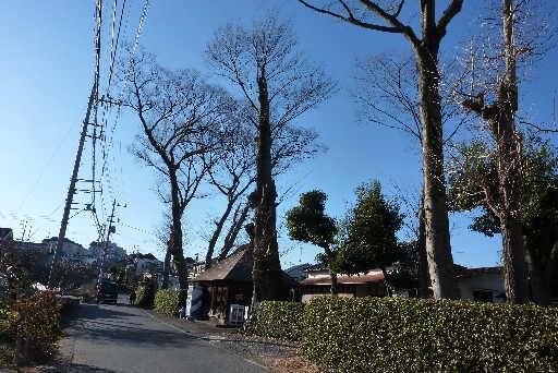 登山・街歩き63-20