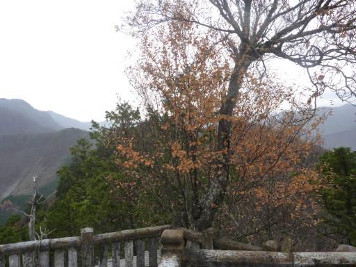 20101113・三峰妙法下山01