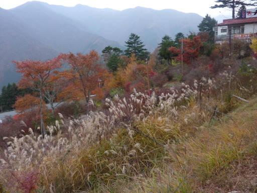 20101113・三峰妙法下山37