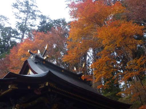 20101113・三峰神社29
