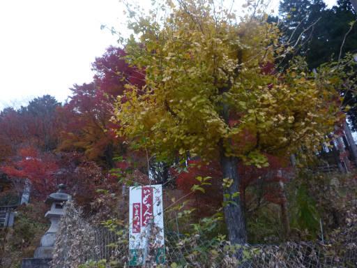 20101113・三峰神社38