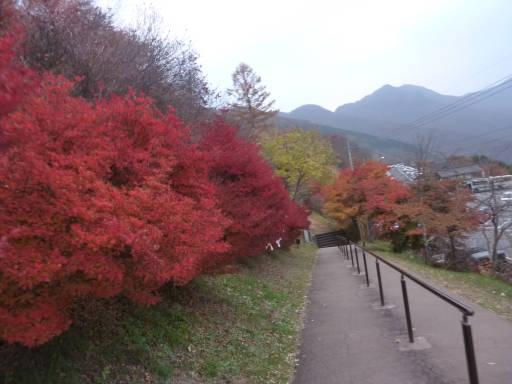 20101113・三峰神社40