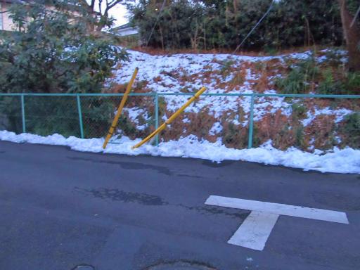 20130122・雪が降る02