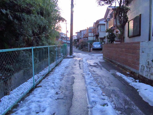 20130122・雪が降る03