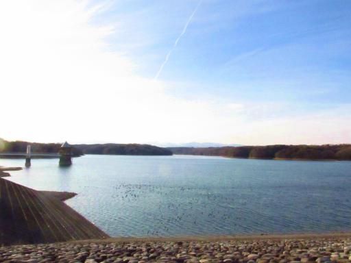 20120209・狭山湖散歩1-18