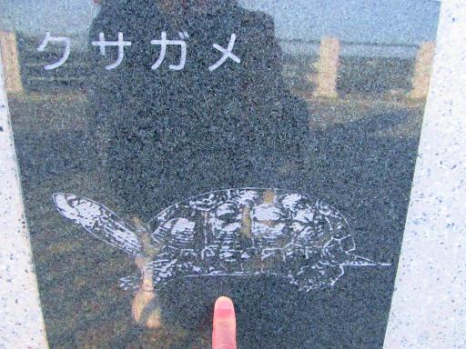 20120209・狭山湖散歩1-17