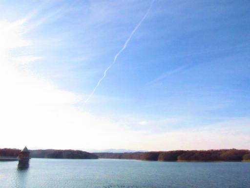 20120209・狭山湖散歩1-20