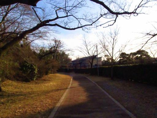 20120209・狭山湖散歩1-21