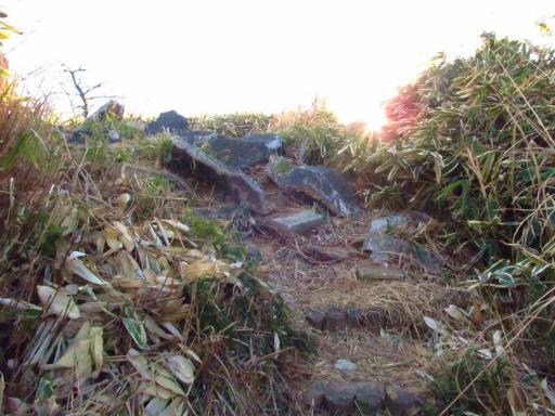 20120209・狭山湖散歩2-11