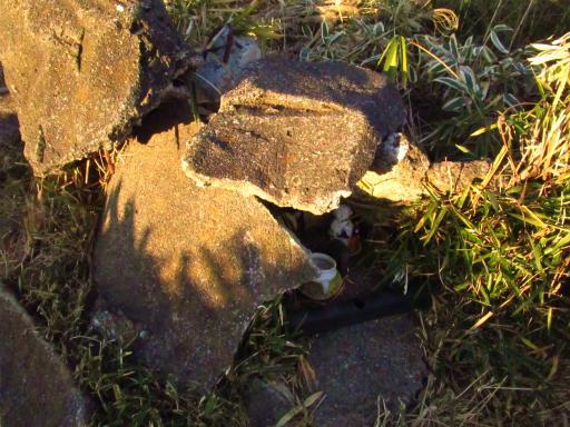 20120209・狭山湖散歩2-13