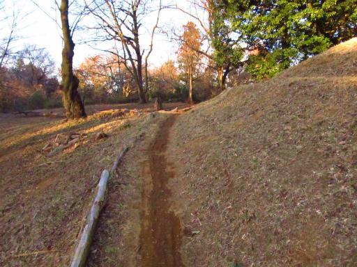 20120209・狭山湖散歩2-22
