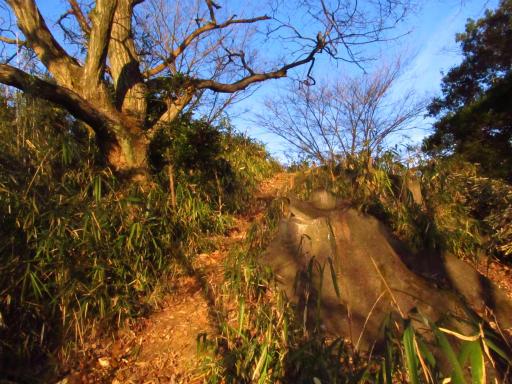 20120209・狭山湖散歩2-19・振り向く