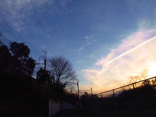 20120209・狭山湖散歩3-09