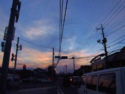 20120209・狭山湖散歩3-15
