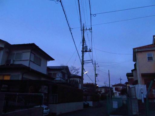 20120209・狭山湖散歩3-19