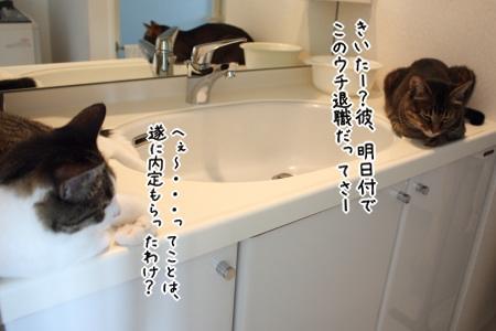 給湯室・・・じゃなくて、洗面所にて