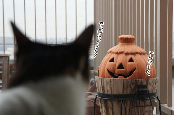 かぼちゃ常駐バルコニー