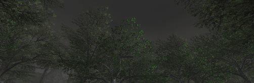 20130814_114104.jpg