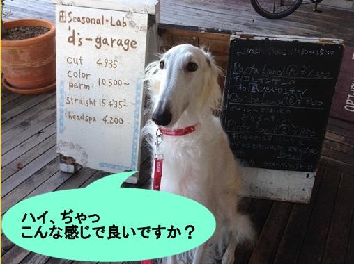 20141118191416b67.jpg