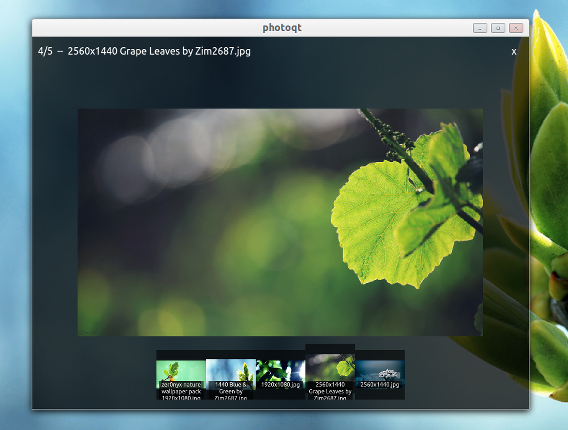 PhotoQt Image Viewer Ubuntu 画像ビューア