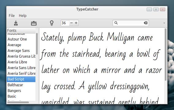 TypeCatcher Ubuntu Google Fonts インストール