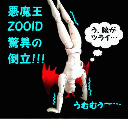 zooid touritu blog